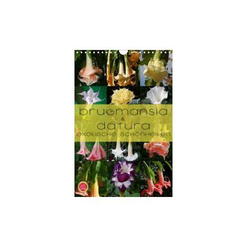 Brugmansia & Datura - Exotische Schönheiten (Wandkalender 2019 DIN A4 hoch) (9783669616898)