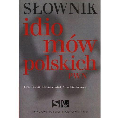 Słownik idiomów polskich PWN (2013)