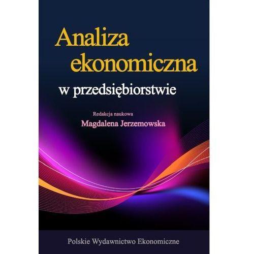 ANALIZA EKONOMICZNA W PRZEDSIĘBIORSTWIE WYD. 4 (9788320823080)