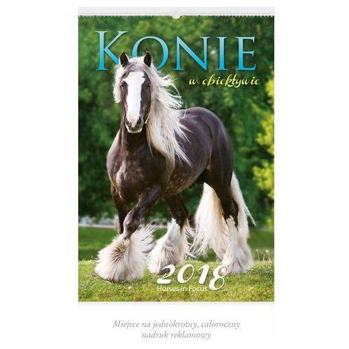 Kalendarz wieloplanszowy Konie w obiektywie RW29