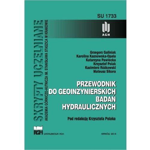 Przewodnik do geoinżynierskich badań hydraulicznych - Grzegorz Galiniak - ebook