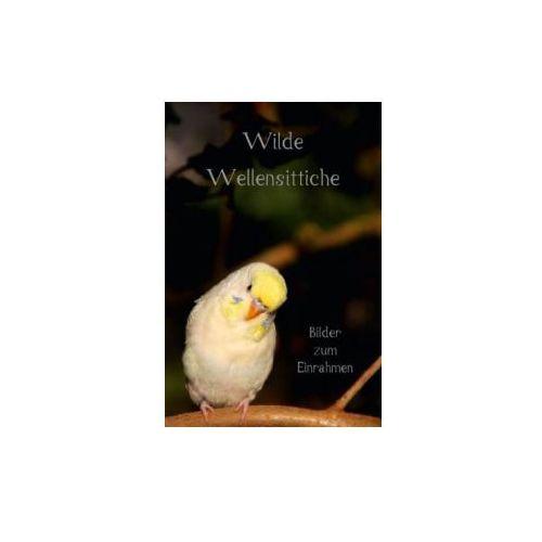 Wilde Wellensittiche - Bilder zum Einrahmen! (Tischaufsteller DIN A5 hoch) (9783660197006)