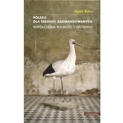 Polska dla średnio zaawansowanych Współczesna polskość codzienna (472 str.)