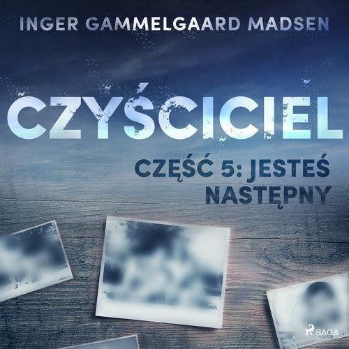 Czyściciel 5: Jesteś następny - Inger Gammelgaard Madsen (MP3) (9788726169713)