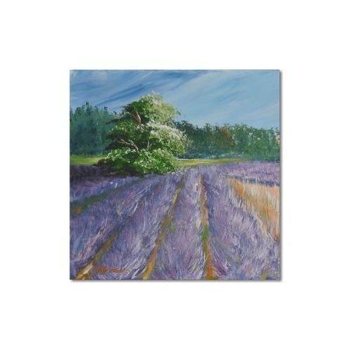 Lawendowe pola 2, obraz ręcznie malowany (obraz)