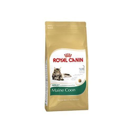 cat maine coon 10 kg marki Royal canin