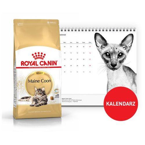 maine coon adult 31 2kg + kalendarz 2018 marki Royal canin