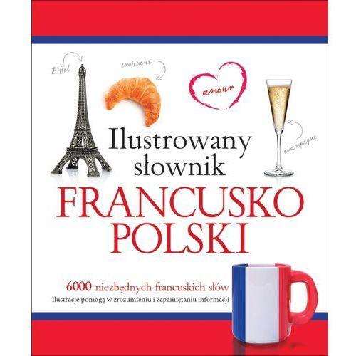 Ilustrowany słownik francusko-polski w.2015 - Tadeusz Woźniak, oprawa broszurowa