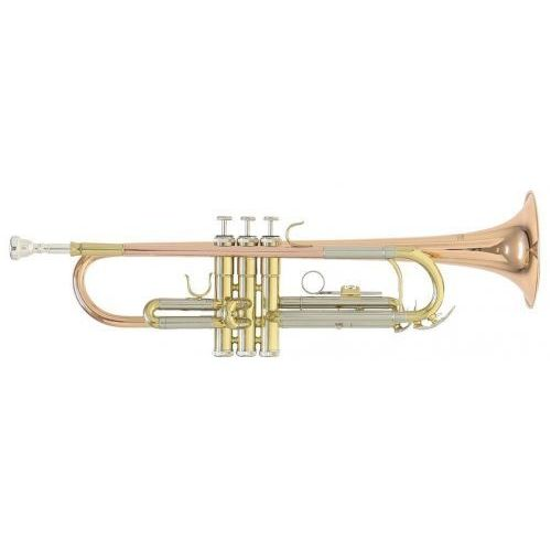 (rb701075) bb-trompete tr-202g marki Roy benson