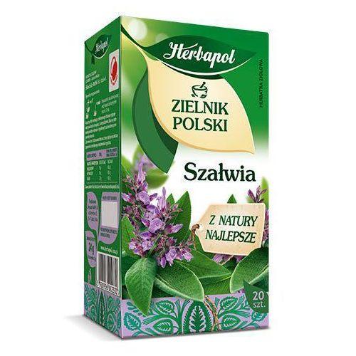 Herbatka ziołowa Zielnik Polski Szałwia EX'20 24 g Herbapol, 5900956002330