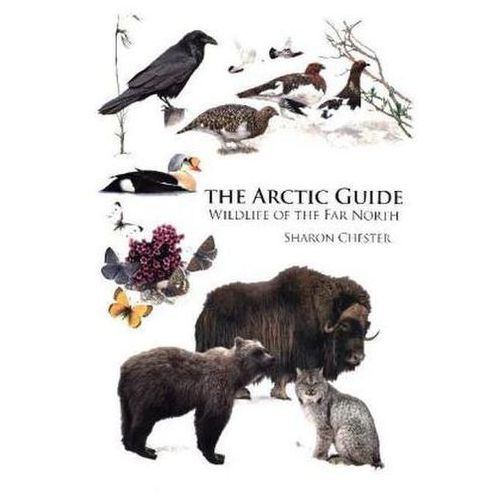 Arctic Guide The People Places & Wildlif (9780691139753)