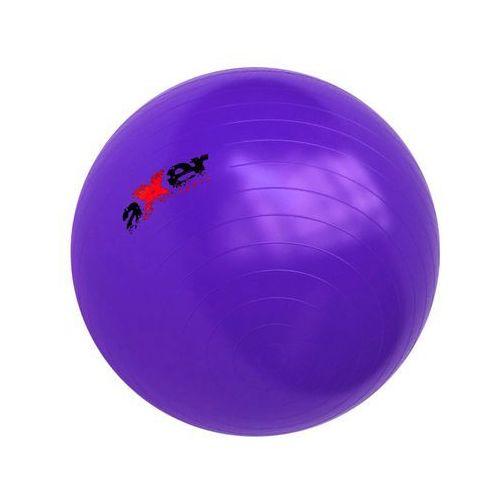 Piłka gimnastyczna STANDARD 65 cm / Dostawa w 12h / Gwarancja 24m / NEGOCJUJ CENĘ ! - oferta [153bd8a19f73e5d5]