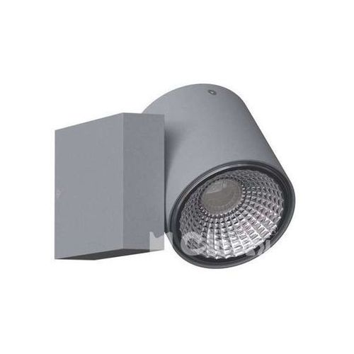 Cleoni Kinkiet lampa ścienna tito t113s1+kolor matalowa oprawa regulowana tuba