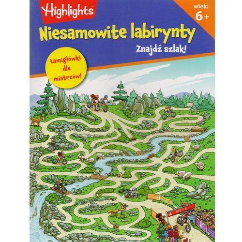 Znajdź Szlak Niesamowite Labirynty - Praca zbiorowa (36 str.)