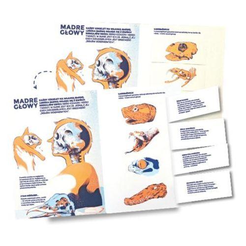 """Książka """"Czyj to szkielet?"""" Wydawnictwo Mamania 9788365087942"""