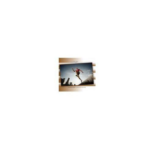 Twilight, cd marki Victor 11