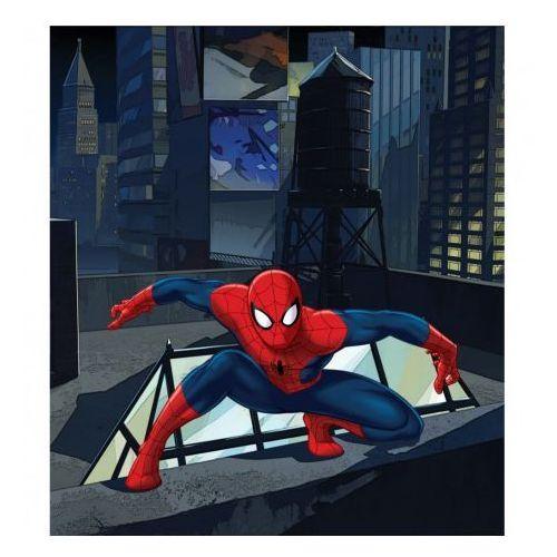 Spiderman na dachu- licencjonowana tapeta do pokoju dziecka - oferta [05494a7c87158413]