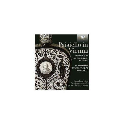 "Paisiello In Vienna A Variations on ""Nel cor piu non mi sento"" by Beethoven, Giuliani, Wanhal, Bortola - Dostawa 0 zł, 95301"