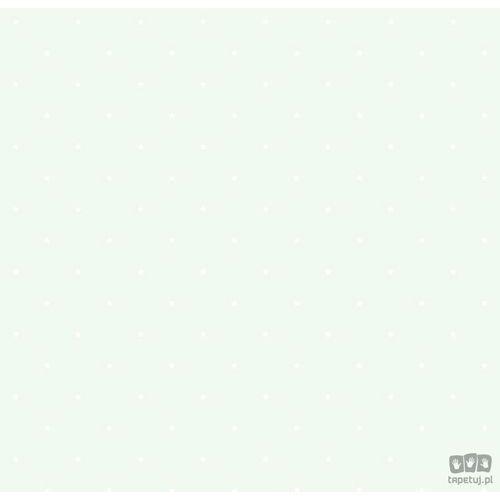 Tapeta ścienna Jack 'N Rose Junior JR1101 Grandeco Bezpłatna wysyłka kurierem od 300 zł! Darmowy odbiór osobisty w Krakowie., JR1101