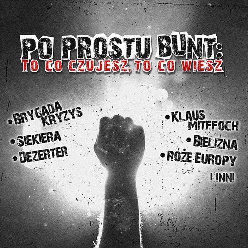 Mtj Po prostu bunt - to co czujesz to co wiesz - różni wykonawcy (płyta cd)