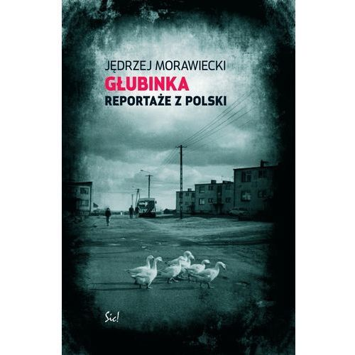 Głubinka Reportaże z Polski - Jędrzej Morawiecki (232 str.)