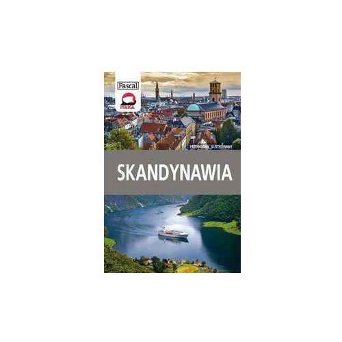 Skandynawia przewodnik ilustrowany - Wysyłka od 4,99 - porównuj ceny z wysyłką (320 str.)
