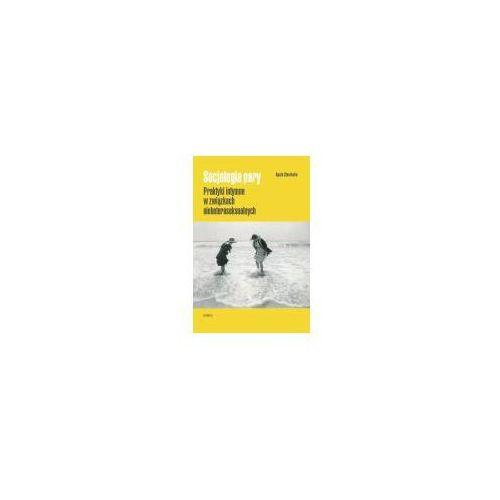 Socjologia pary (9788376884943)