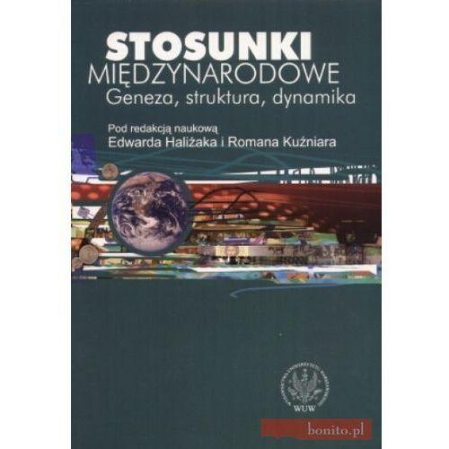 Stosunki międzynarodowe Geneza, struktura, dynamika - Edward Haliżak