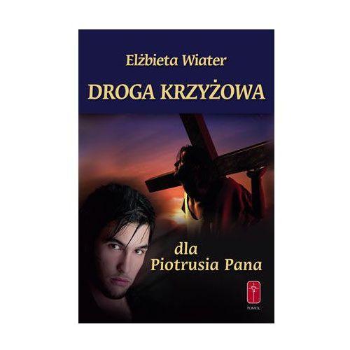 Droga Krzyżowa dla Piotrusia Pana/ Droga Krzyżowa dla Wendy (9788372569547)