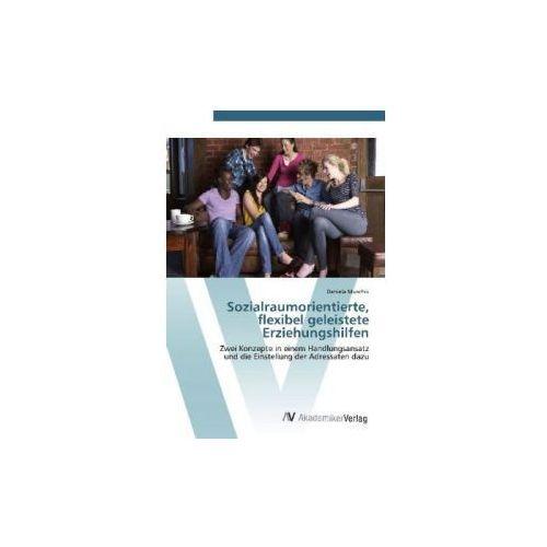 Sozialraumorientierte, flexibel geleistete Erziehungshilfen (9783639423914)