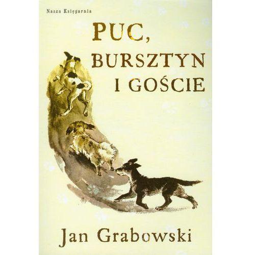 Puc, Bursztyn I Goście (2010)