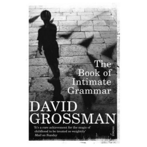 Book Of Intimate Grammar (9780099552321)