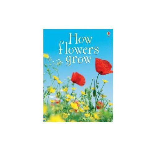 How Flowers Grow (9780746074503)