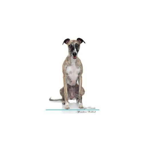 WHIPPET AFFIRMATIONS WORKBOOK WHIPPET PR (9781526977793)