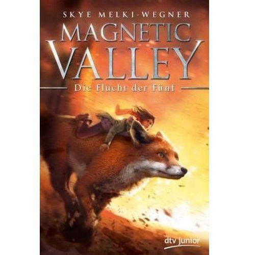 Magnetic Valley - Die Flucht der Fünf (9783423761017)