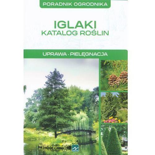 Iglaki Katalog roślin Uprawa Pielęgnacja, Dragon