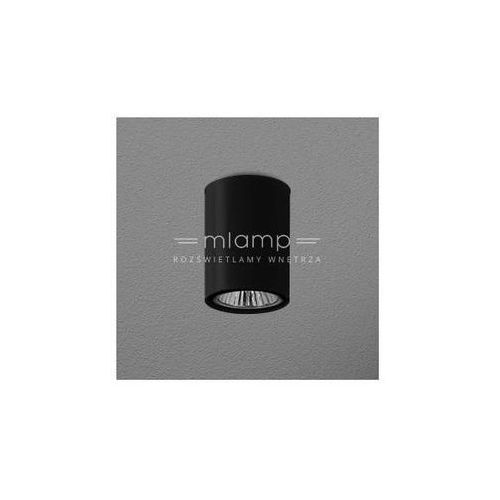 Downlight lampa sufitowa pet fine surface 42311-0000-u8-ph-kolor metalowa oprawa tuba marki Aqform