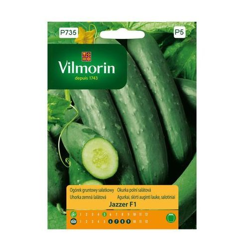Ogórek gruntowy sałatkowy JAZZER F1 nasiona tradycyjne 10 szt. VILMORIN, 0-YW9-0201-24-086