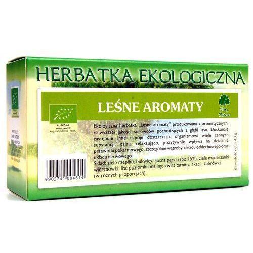 Dary natury herbatka leśne aromaty eko 20x2g (5902741004314)