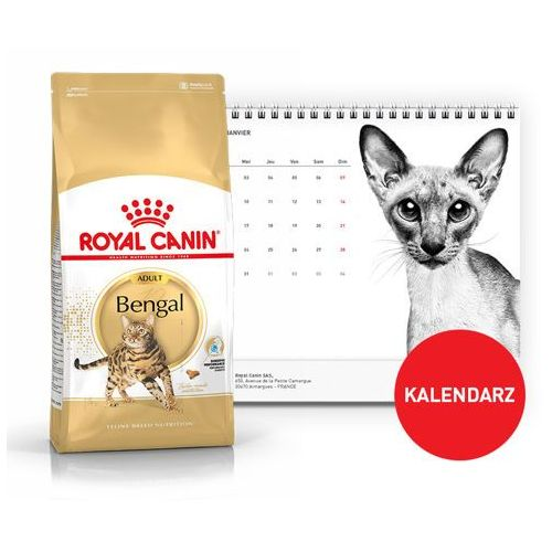 bengal 2kg + kalendarz 2018 marki Royal canin