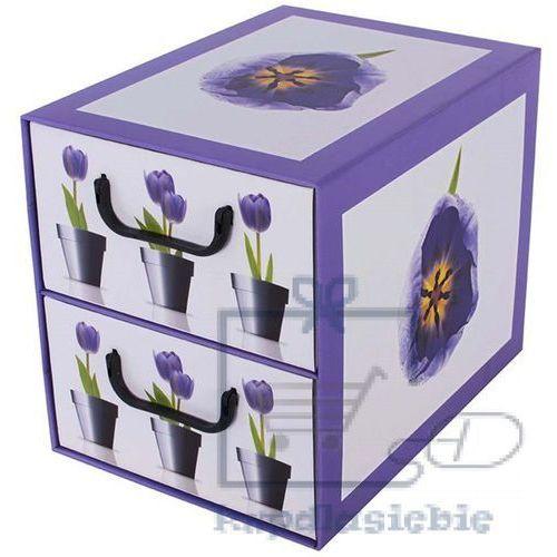 Miss space Pudełko kartonowe 2 szuflady pionowe doniczki-tulipany
