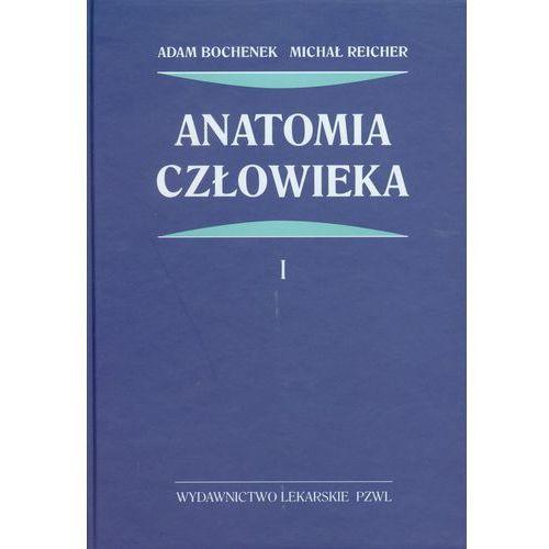 Anatomia człowieka t.1 (2012)