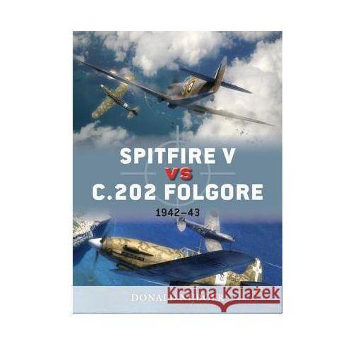 Spitfire V vs c.202 Folgore, Donald Nijoboer