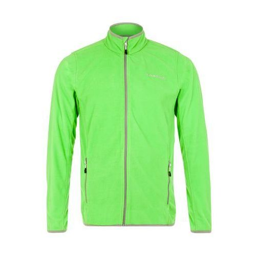 Dare 2B RESILE Kurtka z polaru fairway green, kolor zielony