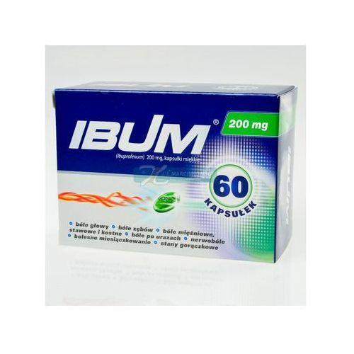 Ibum kapsułki elastyczne 0.2 g 60 sztuk (4x15) - oferta [0553d545534f52f4]