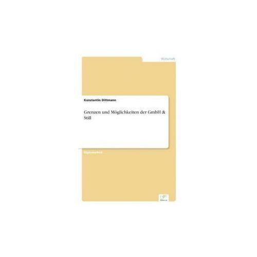 Grenzen und Möglichkeiten der GmbH & Still (9783838654805)