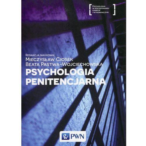 Psychologia penitencjarna - Ciosek Mieczysław, Beata Pastwa-Wojciechowska, Wydawnictwo Naukowe Pwn