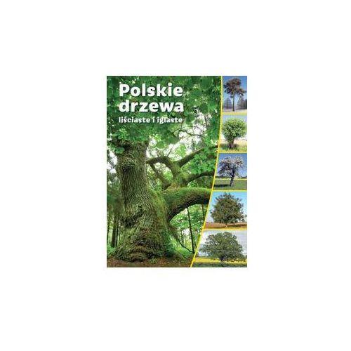 Opracowanie zbiorowe Polskie drzewa liściaste i iglaste /sbm. darmowy odbiór w niemal 100 księgarniach!