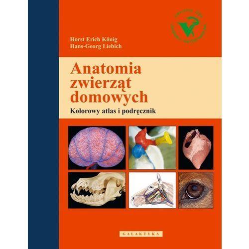Anatomia zwierząt domowych