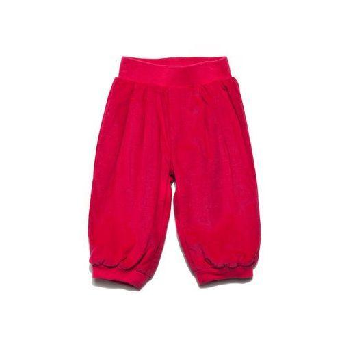 Spodnie Niemowlęce 5L2513 - produkt z kategorii- spodenki dla niemowląt